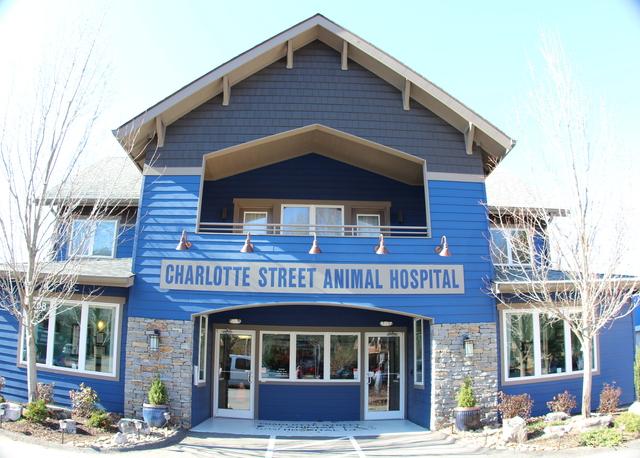 Charlotte Street Animal Hospital Certificate